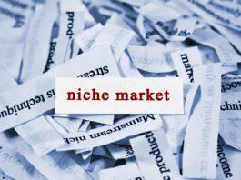 As vantagens do e-commerce de nicho e os caminhos para o sucesso nesse segmento
